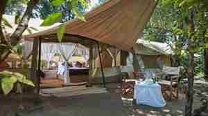 spekes-camp-tent-area-kenya-yellow-zebra-safaris.jpg