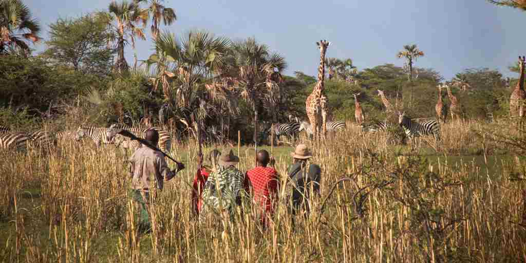 chem-chem-safari-lodge-bush-walk-tanzania-yellow-zebra-safaris.jpg