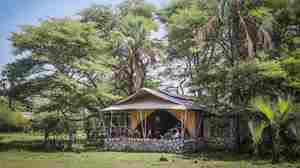 chem chem safari lodge tent exterior tanzania yellow zebra safaris