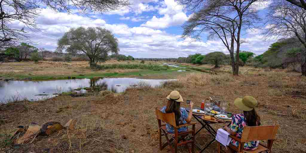 asanja-ruaha-bush-dinner-tanzania-yellow-zebra-safaris.jpg