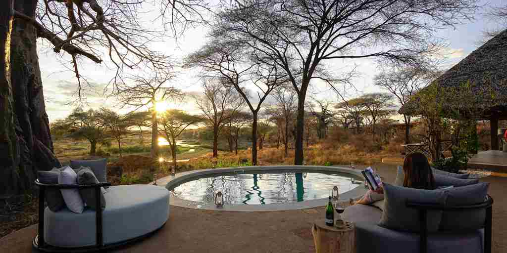 asanja-ruaha-pool-area-tanzania-yellow-zebra-safaris.jpg