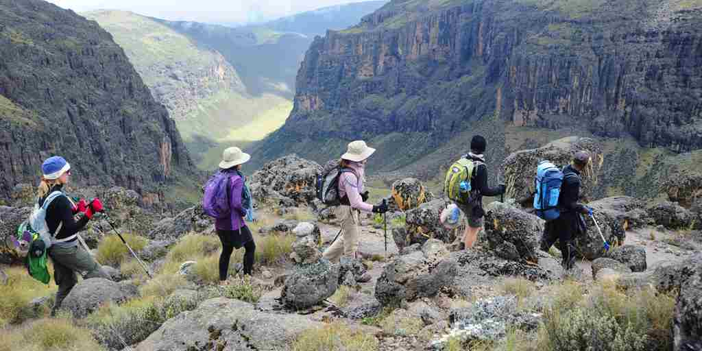 karisia-walking-safaris-mount-kenya-walking-yellow-zebra-safaris.jpg