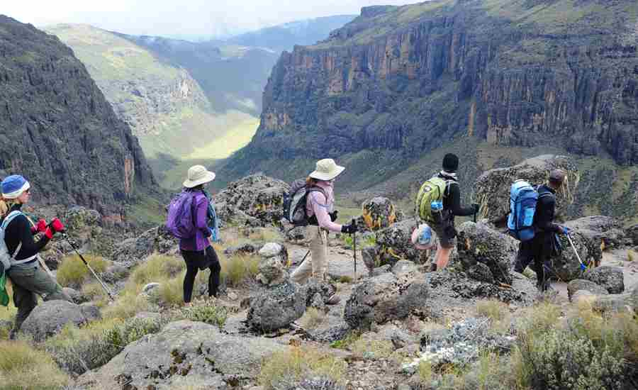 karisia walking safaris mount kenya walking yellow zebra safaris