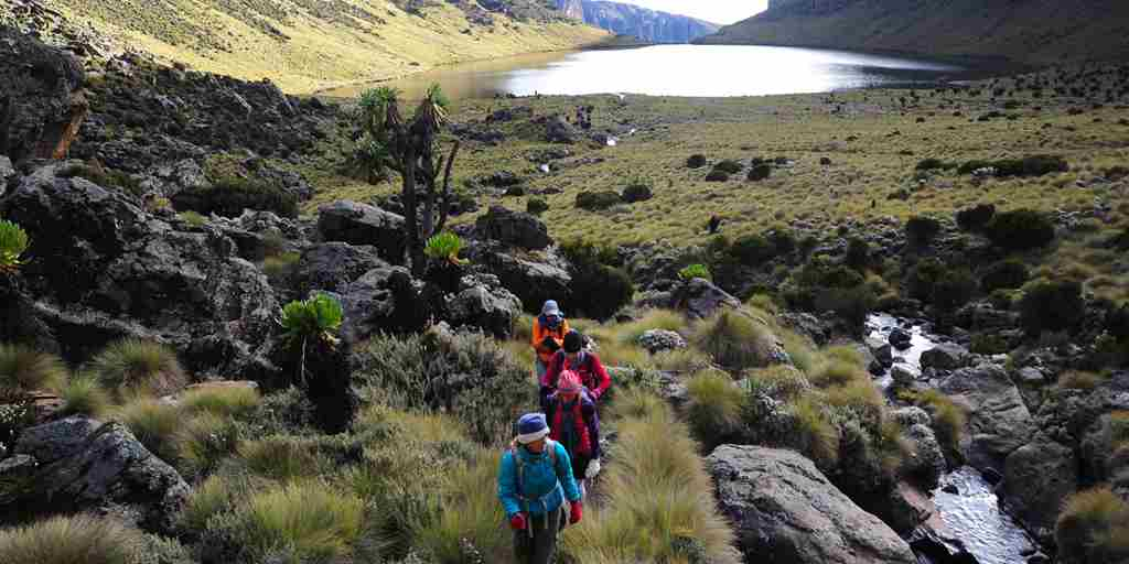 karisia-walking-safaris-mount-kenya-walking-lake-yellow-zebra-safaris.jpg