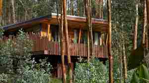 one and only gorillas nest lodge exterior view rwanda yellow zebra safaris