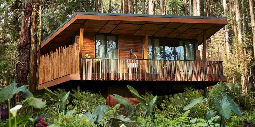 one and only gorillas nest lodge exterior rwanda yellow zebra safaris