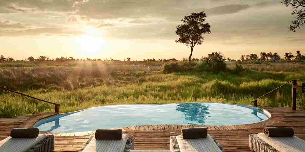 sanctuary baines camp pool area botswana yellow zebra safaris