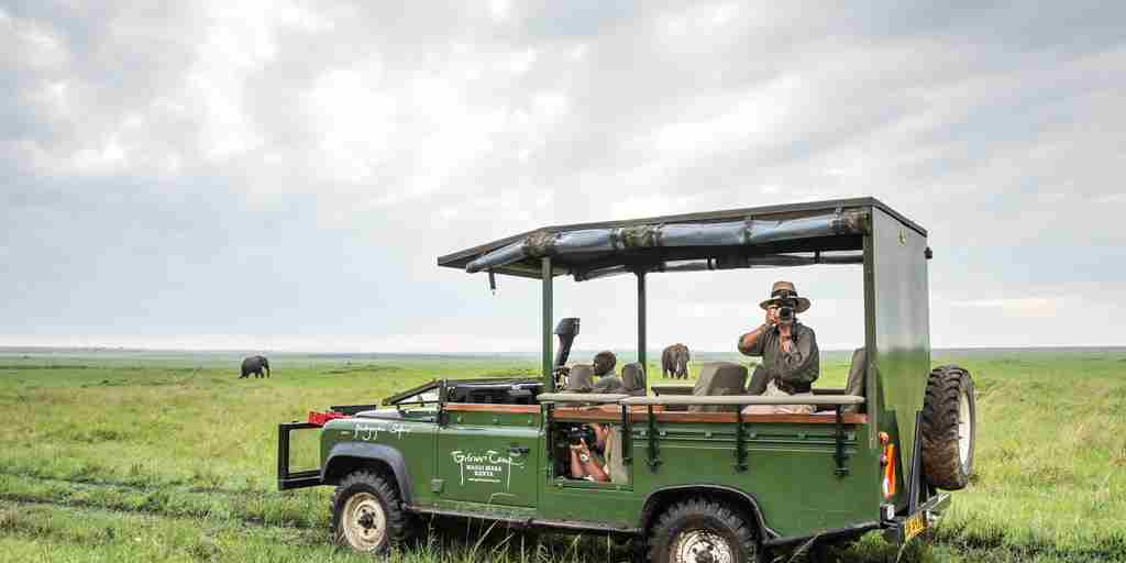 governors camp game drive kenya yellow zebra safaris