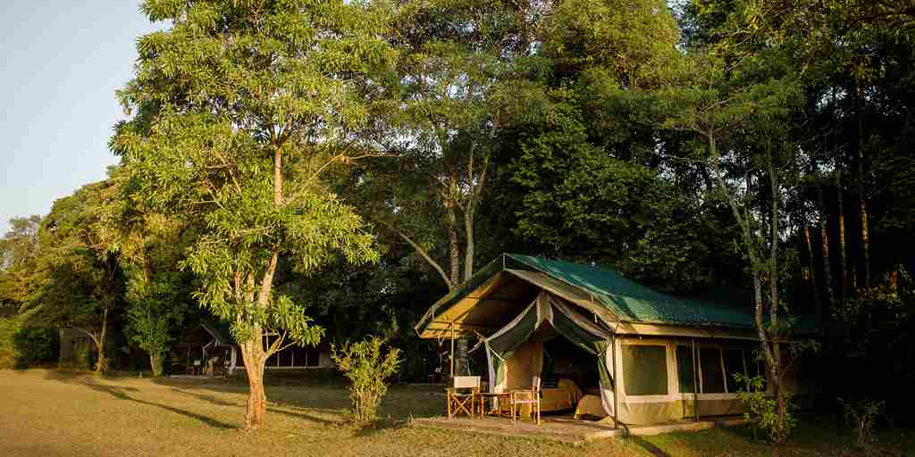 governors camp tent exterior kenya yellow zebra safaris