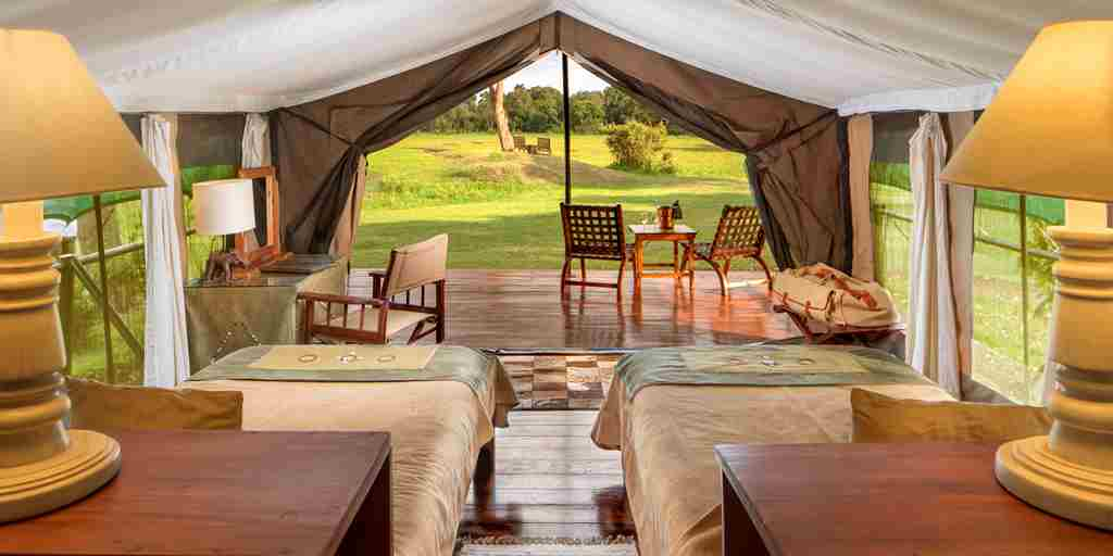 little governorstwin room view kenya yellow zebra safaris