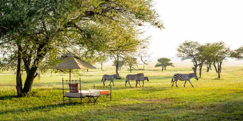 singita-sabora-tented-camp-bush-bed-tanzania-yellow-zebra-safaris.jpg