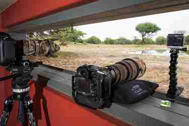 photography hide anderssons at ongave yellow zebra safaris