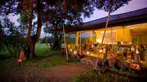 kicheche mara camp lounge kenya yellow zebra safaris