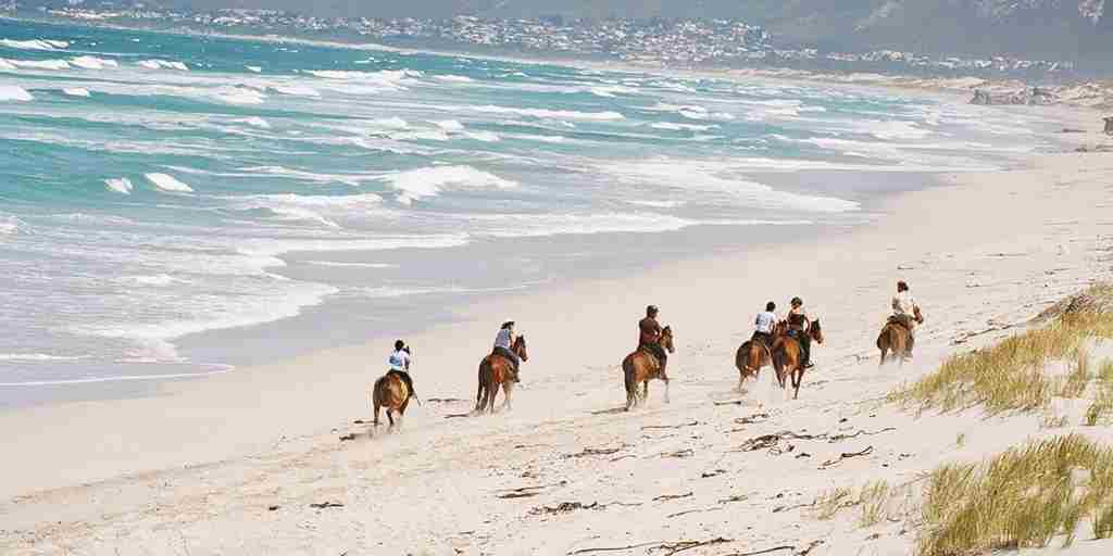 grootbos garden lodge beach horse riding south africa yellow zebra safaris