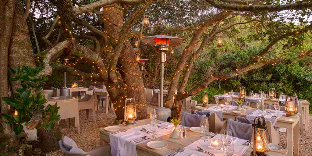 grootbos garden lodge dining south africa yellow zebra safaris