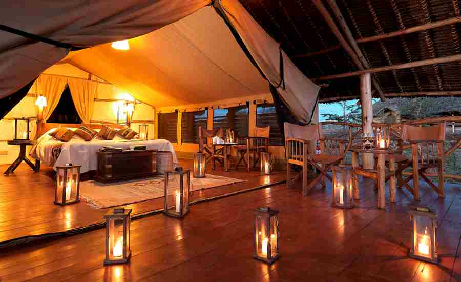 satao elarai bedroom tent kenya yellow zebra safaris