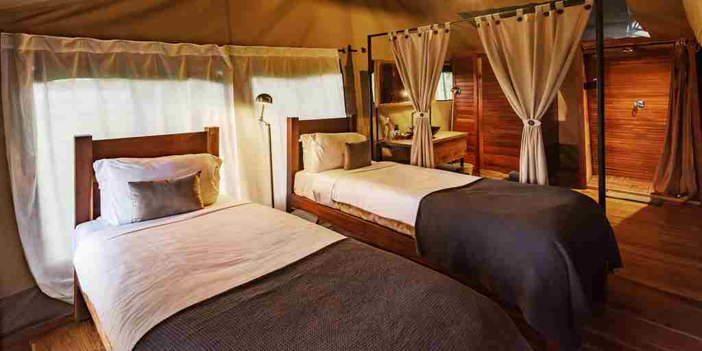 dunia camp twin bedroom tanzania yellow zebra safaris