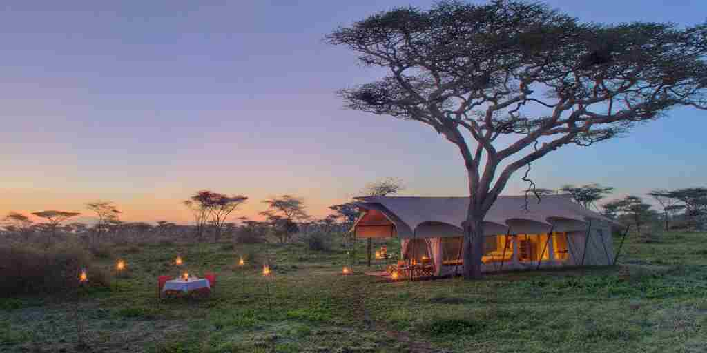 Serengeti Guest Room5