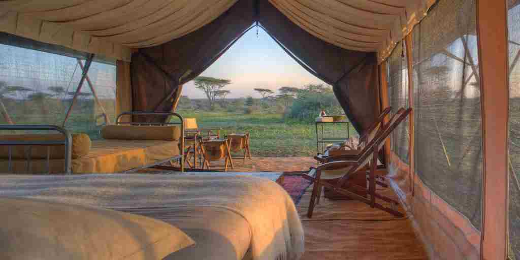 Serengeti Guest Room6