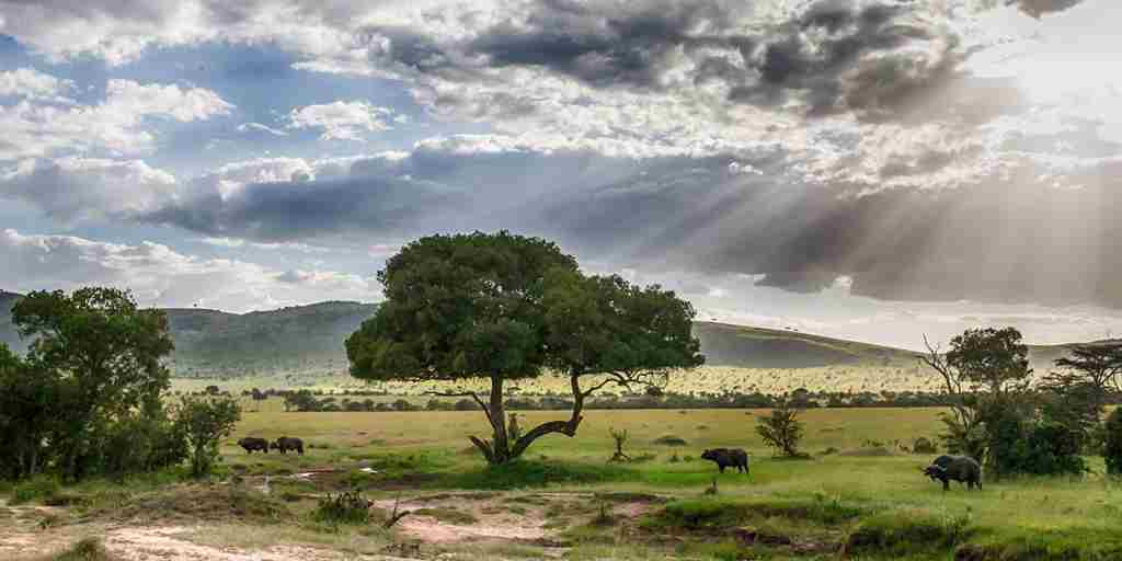 Tanzania-landscape-on-a-safari-with-andBeyond.jpg