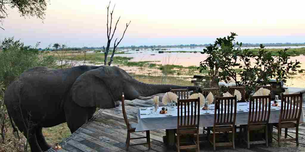 Zarafa Camp   Luxury Safaris Botswana (1)