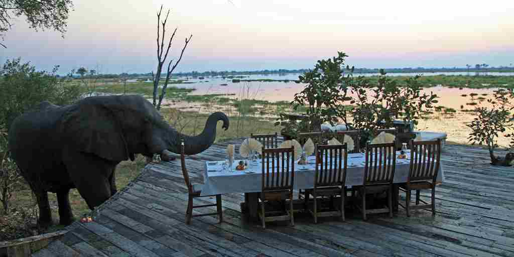 Zarafa Camp - Luxury Safaris Botswana (17).jpg